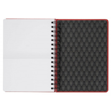 Red Hot Chili Peppers (Logo) - plakat